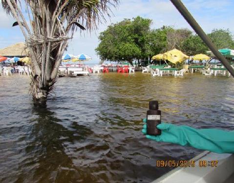 Laudo da Ufopa apresenta balneabilidade das praias de Alter do Chão